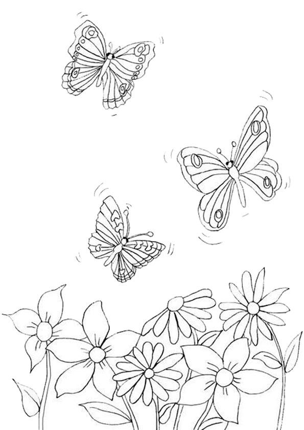 Ausmalbilder Schmetterling-17 Ausmalbilder Malvorlagen