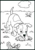 hunde ausmalbilder 13   Ausmalbilder Malvorlagen