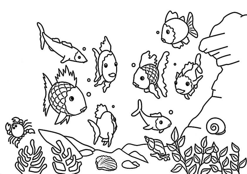 Fische-5 Ausmalbilder Malvorlagen