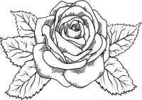 Blumen-2 | Ausmalbilder Malvorlagen