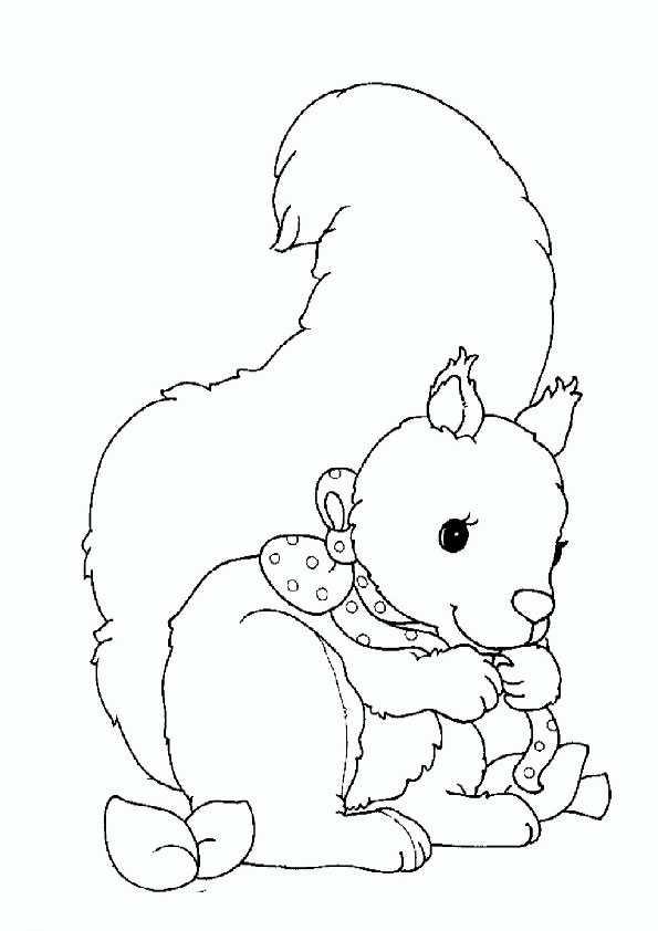 Eichhörnchen-20 Ausmalbilder Malvorlagen