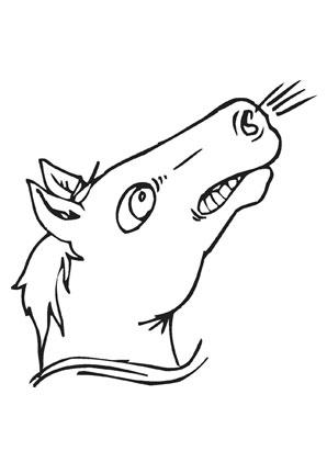Ausmalbilder Schnaubendes Pferd Pferde Malvorlagen