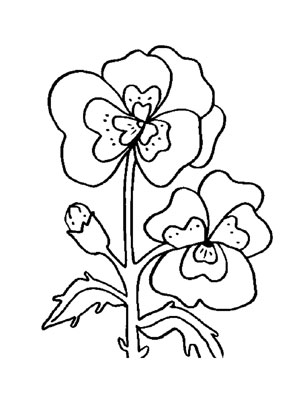 Ausmalbilder Stiefmtterchen 2  Blumen Malvorlagen ausmalen