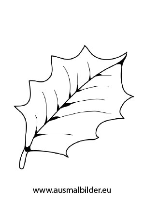 Ausmalbilder Stechpalmenblatt - Herbst Malvorlagen