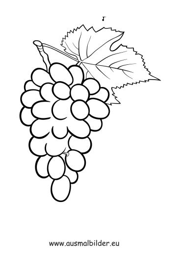 Ausmalbilder Weintrauben  Obst und Gemse Malvorlagen