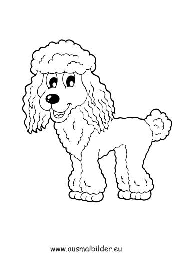 Ausmalbilder Pudel - Hunde Malvorlagen