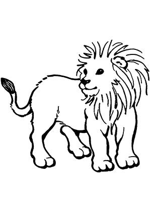 Ausmalbild Junges Löwenkind zum Ausdrucken