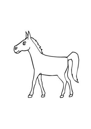 Ausmalbilder Junges Fohlen - Pferde Malvorlagen