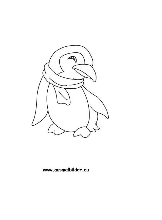 Ausmalbilder Pinguin Pinguine Malvorlagen