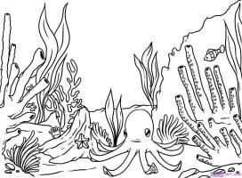 Koralle Ausmalbilder & Malvorlagen   100 KOSTENLOS