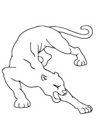 Puma Ausmalbilder & Malvorlagen   100 KOSTENLOS