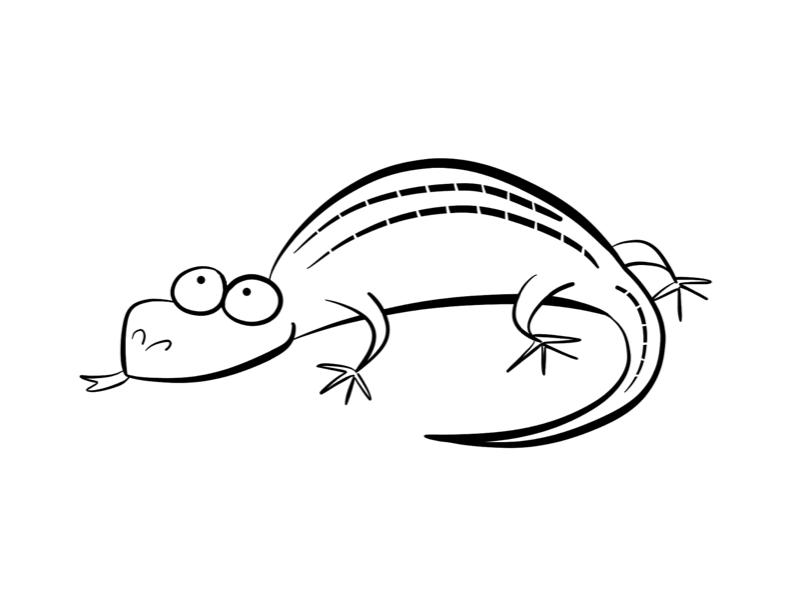 Gecko Ausmalbilder & Malvorlagen - 100% KOSTENLOS