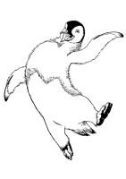 Happy Feet Ausmalbilder & Malvorlagen   100 KOSTENLOS