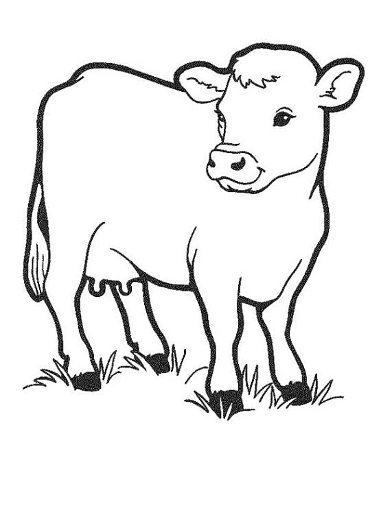 Ausmalbilder für Kinder Kuh 10