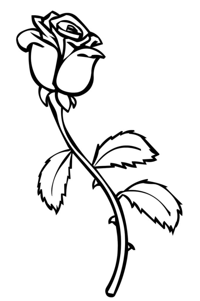 Ausmalbilder für Kinder Rosen 12