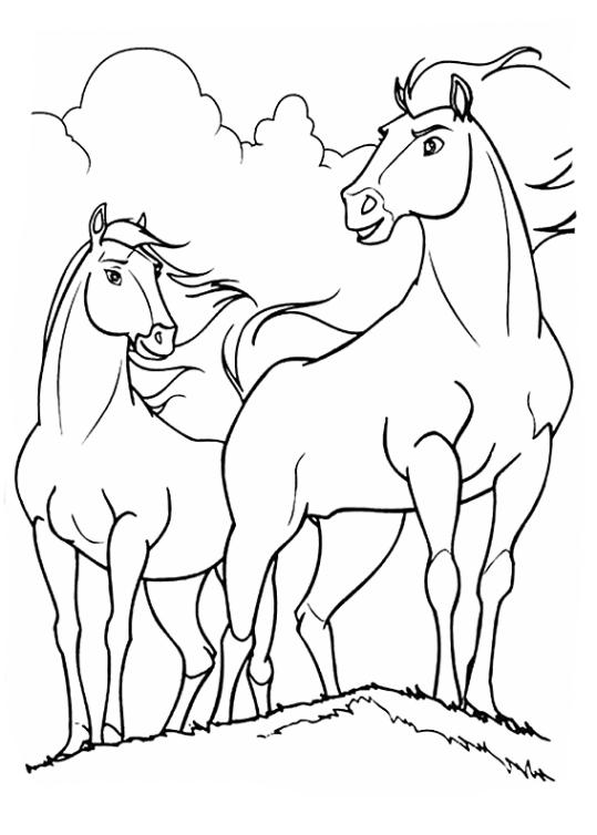 ausmalbilder pferde spirit  spirit wild und frei bilder