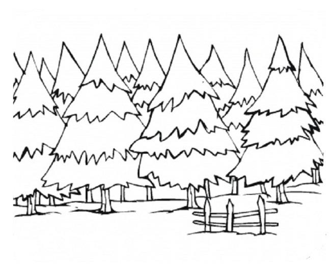 Ausmalbilder für Kinder Wald 2