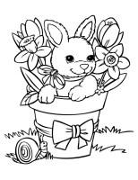 Ausmalbilder Kaninchen, bild Osterhase
