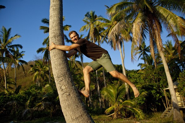 Climbing the Palm Tree