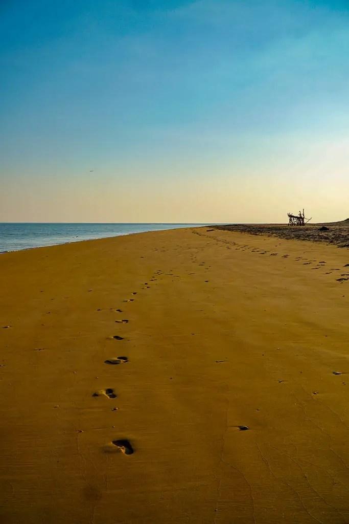 Bare Sand Island