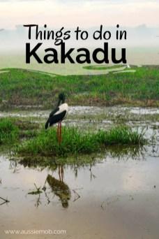 things to do in Kakadu (1)