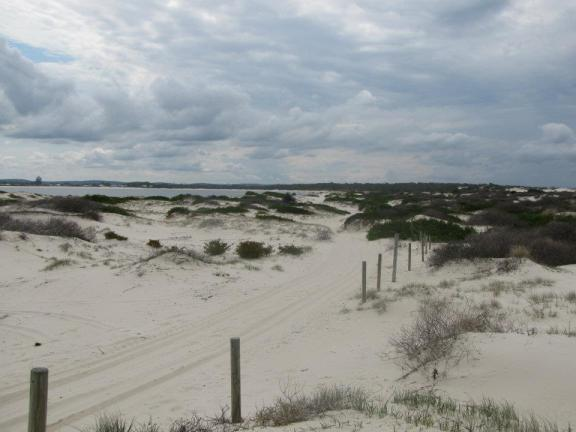 A windswept stretch of sand near Jimmy's Beach