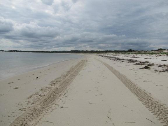 Tire tracks disappear down Jimmy's Beach