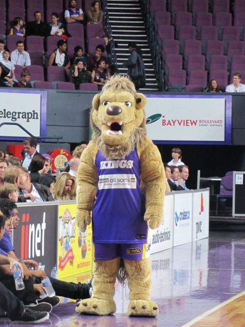 The Sydney Knights Lion