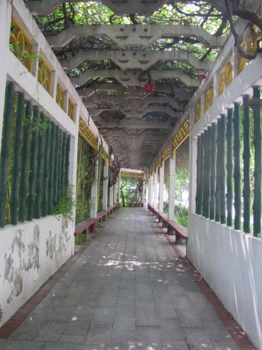 Vine covered walkway