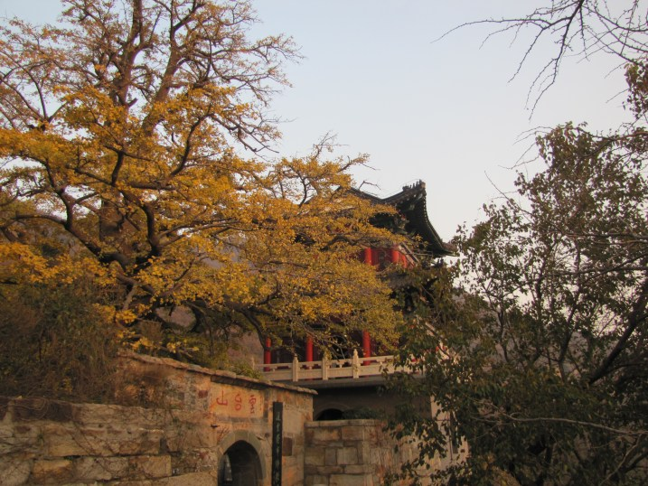 Autumn leaves on HuaGuo Shan