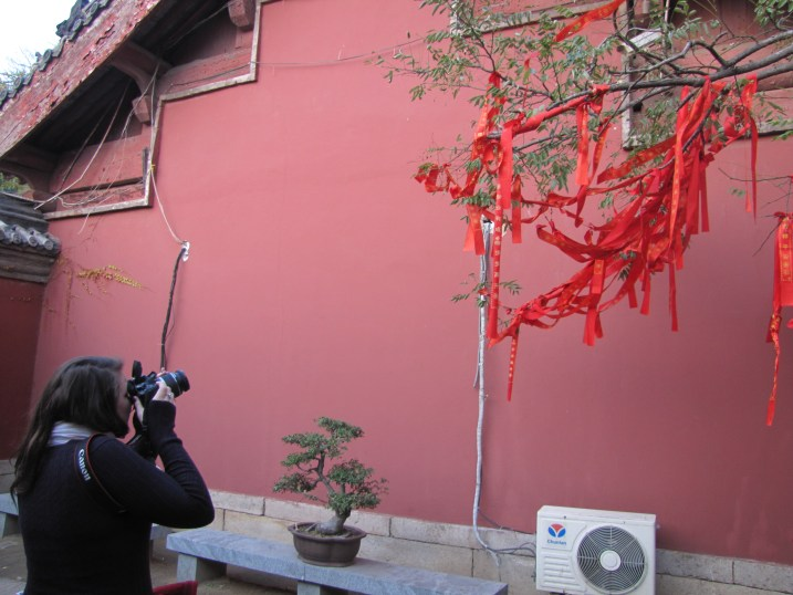 Red ribbons on HuaGuo