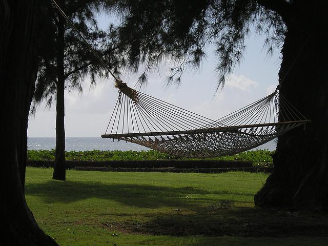 Hammock in Hawaii