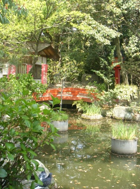 A tranquil pond at the entrance to Sumiyoshi