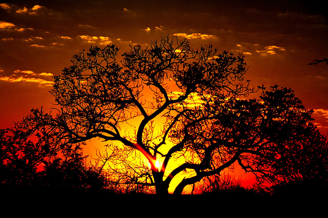 South Africa sunset