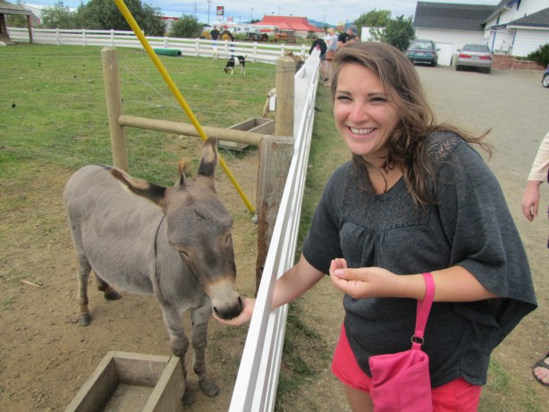 Heather befriends the well endowed donkey.