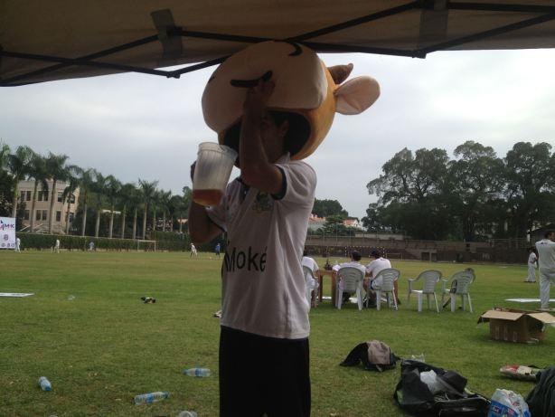 'Corky' wearing a cow head for no real reason.