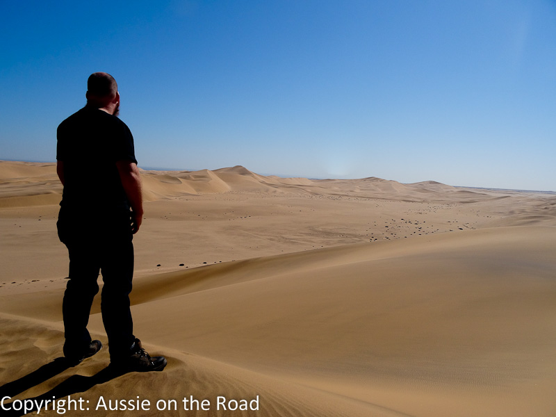 Standing atop a sand dune trying to look wistful.