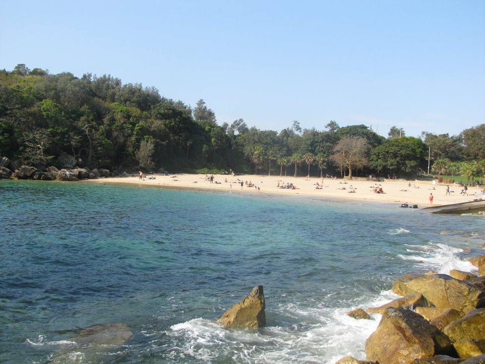 shelly beach sydney northern beaches