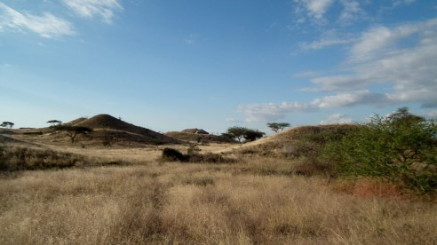 Another shot of the open grasslands and rolling hills.