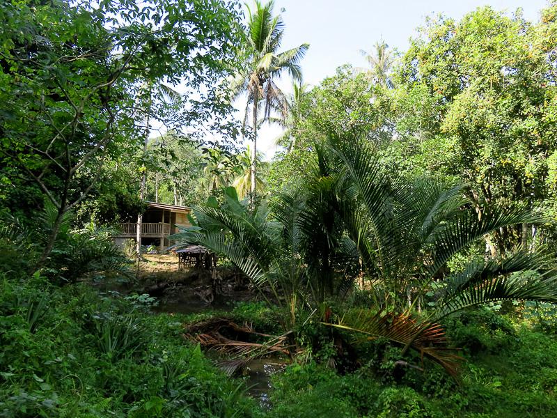 kiulu farm stay local hut