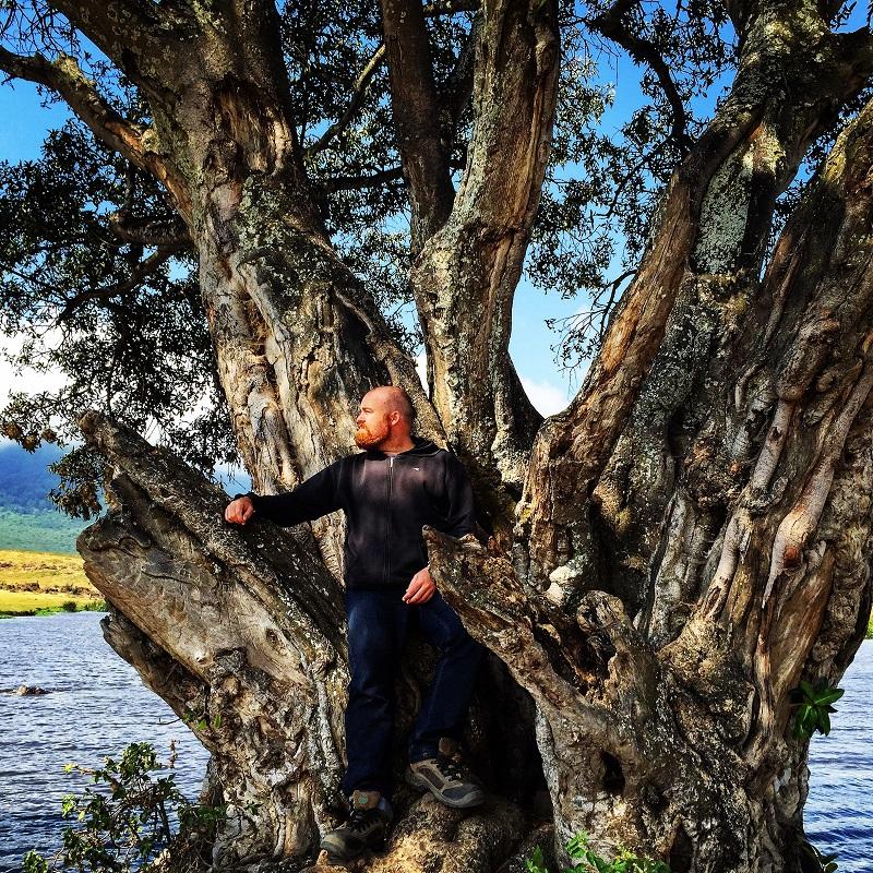 ngorongoro hippo pool tree