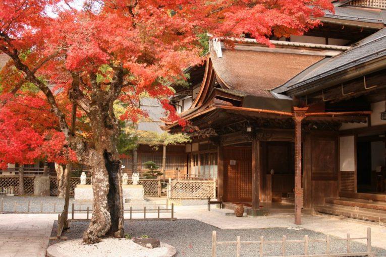 24 - Koyasan Buddhist Retreat