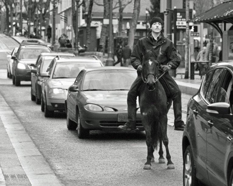 portland horse rider