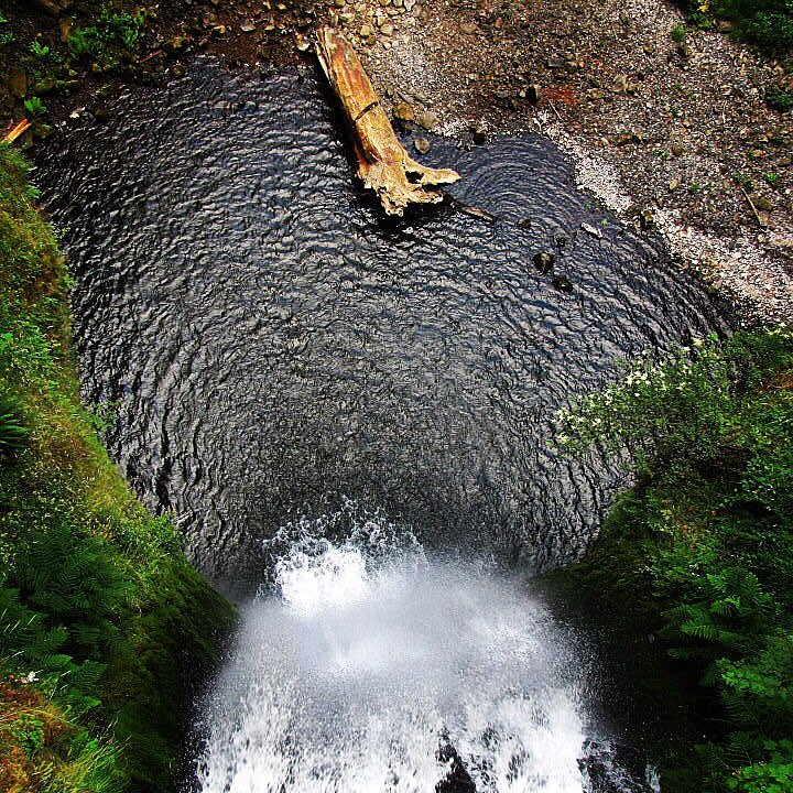waterfall way dorrigo