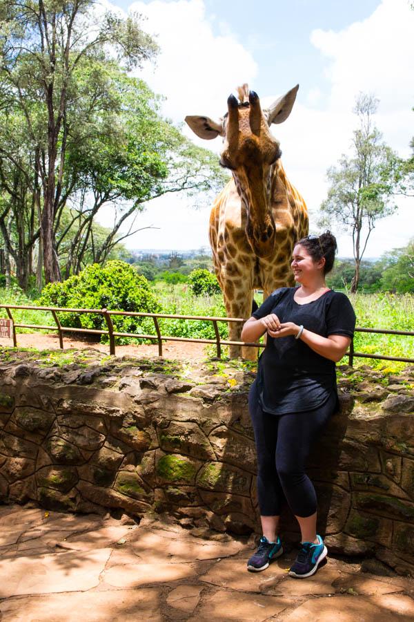 giraffe center nairobi