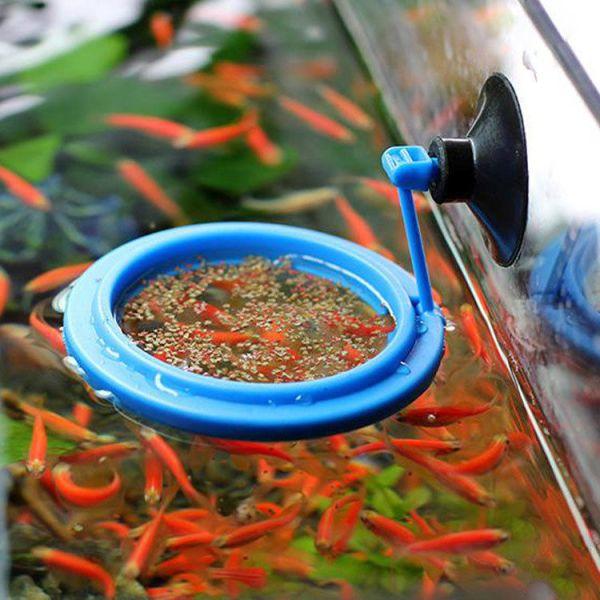 Floating Fish Feeding Ring Fish Aquarium Tank Feeder