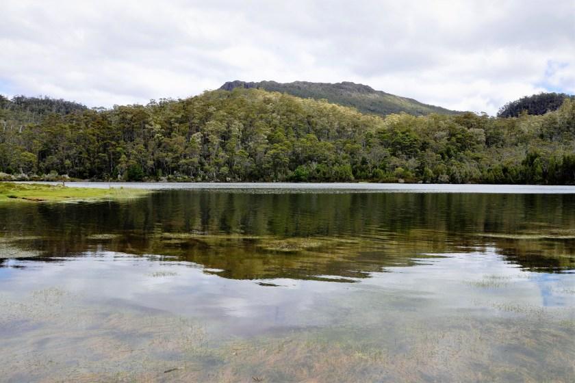 Reflection at Junction Lake