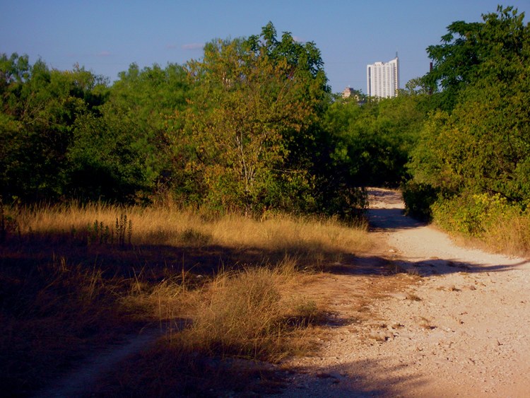 barton creek greenbelt trail hiking nature