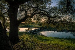 Austin Farm and Ranch Photography - Austin 360 Photography