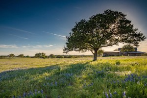 Central Texas Ranch Photography - Austin 360 Photography